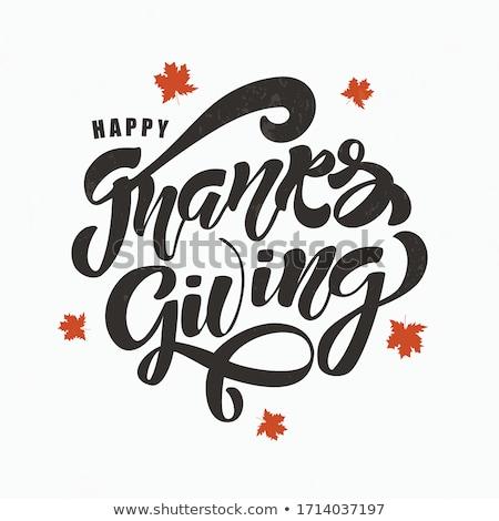 Bird Turkey Symbol of Thanksgiving Day Vector Stock photo © robuart