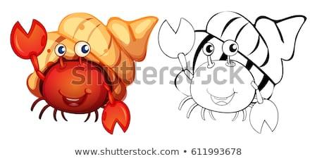 Animal outline for hermit crab Stock photo © colematt