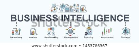 ストックフォト: ビジネス · インテリジェンス · 経営分析 · 管理 · ツール · ベクトル