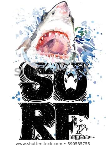 Akwarela sylwetka rekina biały morza charakter Zdjęcia stock © Artspace