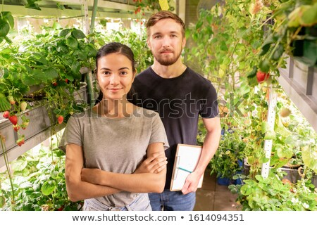 Two young contemporary farmers or gardeners working in greenhouse Stock photo © pressmaster