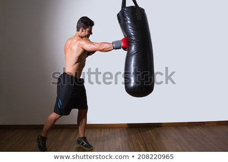 Boxer With Punch Bag In Action Stock photo © Jasminko