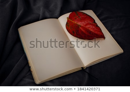 autumn leaves and sheets of paper stock photo © konturvid