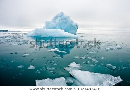 Landschap ijsberg Blauw zee vogels hemel Stockfoto © mariephoto