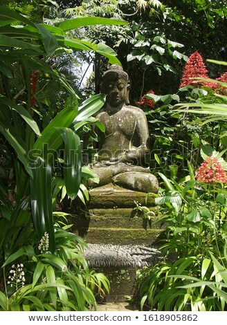 Stock photo: landscape stone and buddha