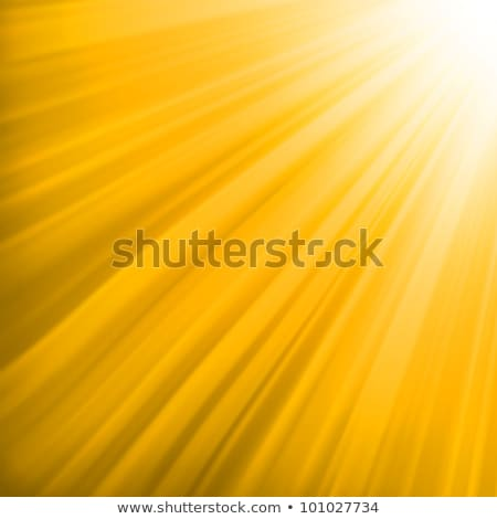 Orange luminous rays. EPS 8 Stock photo © beholdereye