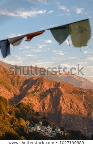 oração · bandeiras · Butão · vento · bandeira · vermelho - foto stock © samsem