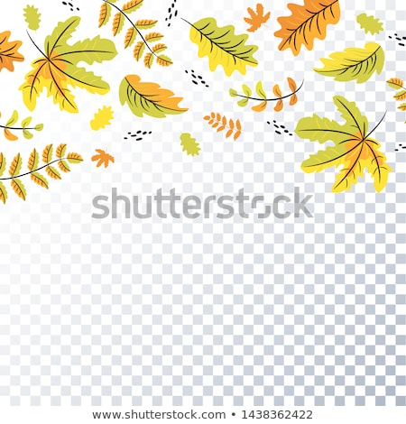 Oak tree in fall 01 Stock photo © LianeM