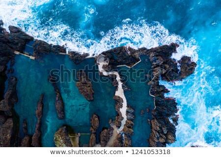 マデイラ · 風景 · 周りに · 市 · 島 · ツリー - ストックフォト © dinozzaver
