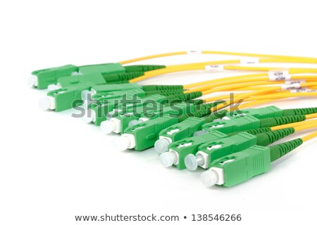 Stock photo: fiber optic coupler with SC connectors