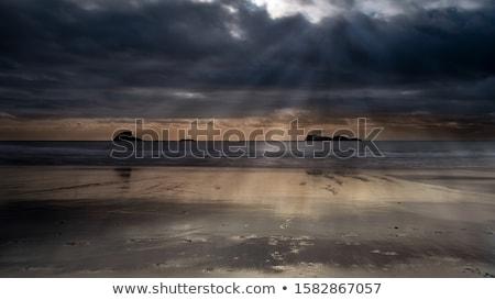 Trinidad state beach in summer, California, USA Stock photo © snyfer