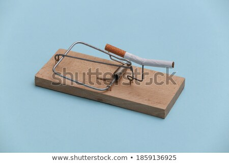 egér · csapda · cigaretta · fa · halál · dohányzás - stock fotó © lunamarina