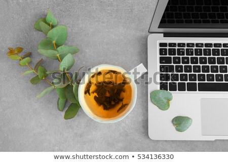 茶碗 ノートパソコン 孤立した 白 コーヒー デザイン ストックフォト © karandaev