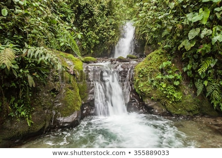 Small Waterfall in Mindo Stock photo © rhamm