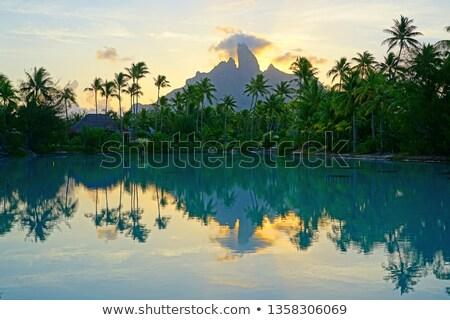 Image intérieur île forêt mer été Photo stock © danielbarquero