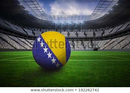 サッカーボール ボスニアヘルツェゴビナ フラグ ピッチ サッカー 世界 ストックフォト © stevanovicigor