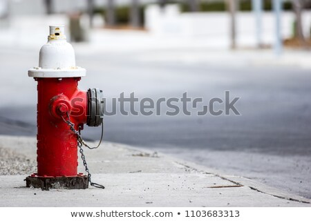 Water Hydrant - Red, White and Green Stock photo © imagex