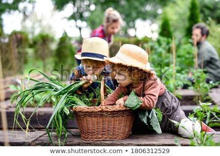 retrato · de · família · menina · homem · jardim · mãe · pai - foto stock © monkey_business