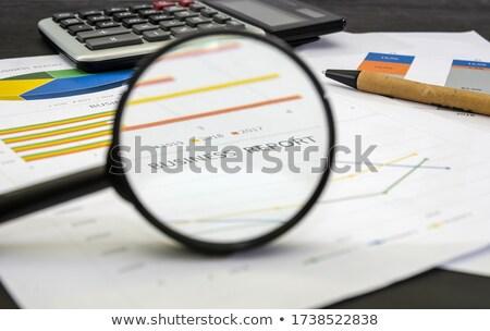 információ · lopás · nagyító · régi · papír · piros · függőleges - stock fotó © tashatuvango