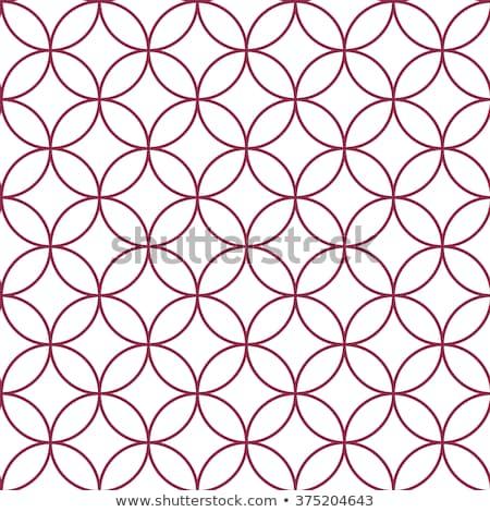 Tarka vibráló körök minta illusztráció grafikus Stock fotó © latent