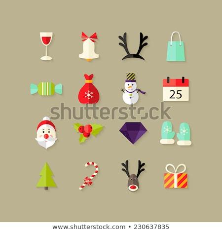 Rowan Berry Christmas Flat Icon Stock photo © Anna_leni