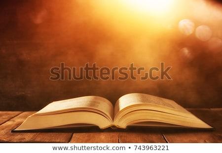 свет открытых Библии черный книга Сток-фото © wavebreak_media