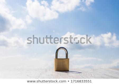 Metal padlock on white background Stock photo © ozaiachin