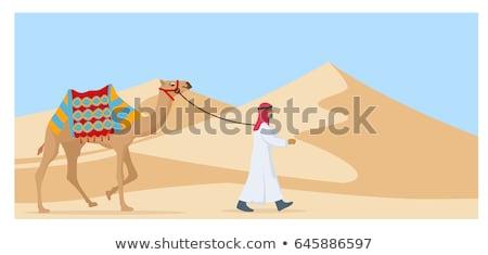 arab man and camel stock photo © adrenalina
