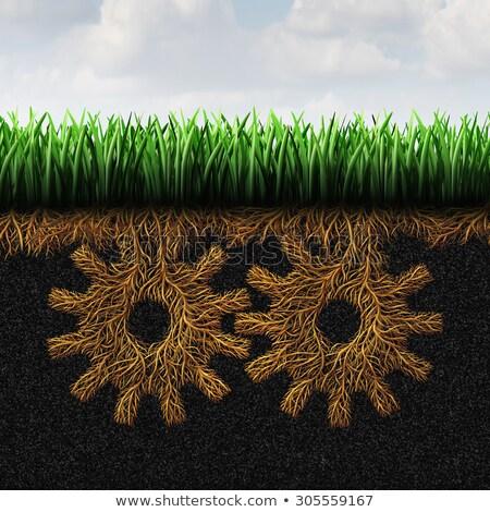sociale · écologie · environnement · changement · réchauffement · climatique · environnement - photo stock © lightsource
