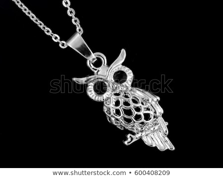 owl from jewels Stock photo © Karamio