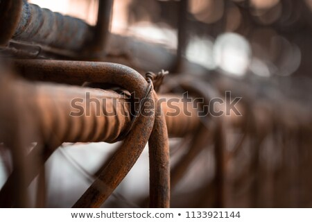 Ceative Process Concept Stock photo © Lightsource