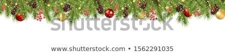 Noel · çelenk · görüntü · eps · 10 · vektör - stok fotoğraf © beholdereye