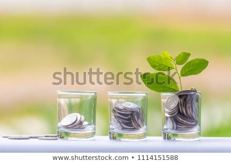 klimmen · goud · dollarteken · stappen · woord · witte - stockfoto © 3mc