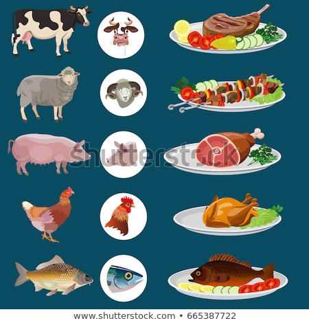 куриные говядины мяса растительное гарнир Ломтики Сток-фото © Digifoodstock