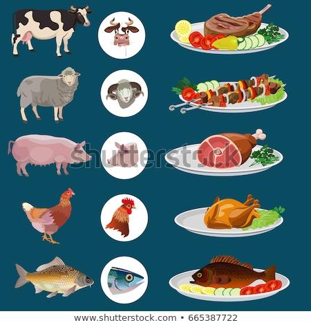 Frango carne carne vegetal enfeite fatias Foto stock © Digifoodstock