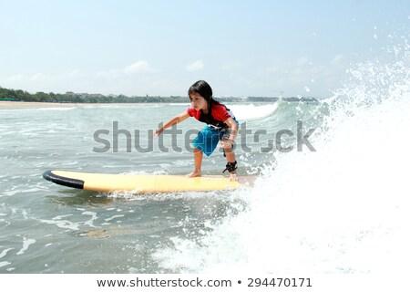 肖像 小さな ファー サーフボード 水 ストックフォト © deandrobot