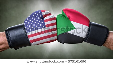 A boxing match between the USA and Sudan Stock photo © Zerbor