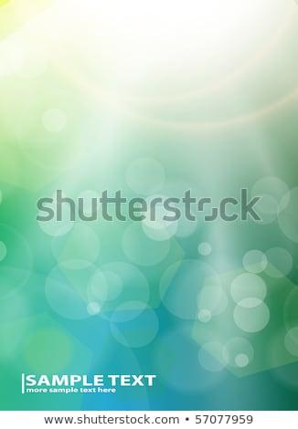 abstrato · luxo · branco · vetor · luz · labareda - foto stock © sarts