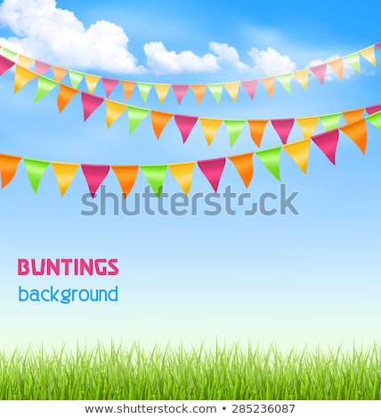 Bunting Birthday Flags With Sky And Grass Border Stock photo © barbaliss