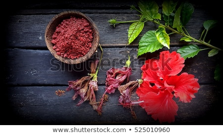 hibiscus flower and spices Stock photo © Digifoodstock