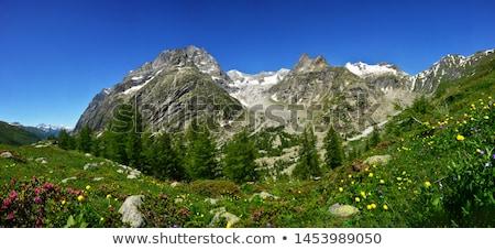 mont Blanc massif from Ferret valley Stock photo © Antonio-S