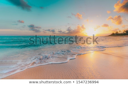 Romantikus tengeri kilátás naplemente vektor rajz illusztráció Stock fotó © ddraw