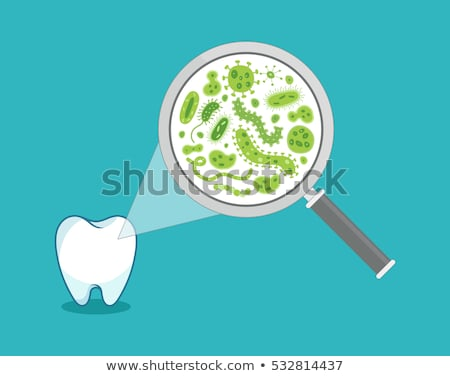 Tooth Magnifying Glass Bacteria Concept Stock photo © Krisdog