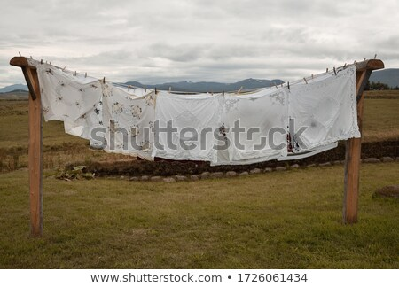 carpet pegged to a clothesline Stock photo © 5xinc