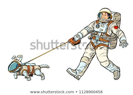 男 犬 孤立した 白 ポップアート レトロな ストックフォト © studiostoks
