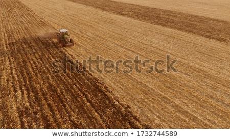 Agrícola campo colheita trator solo Foto stock © artjazz