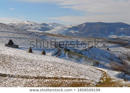 hoog · bergen · sneeuw · winter · vers · winterseizoen - stockfoto © taviphoto