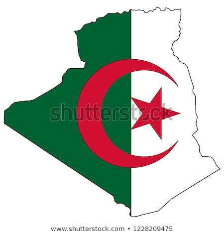 Алжир карта вектора икона дизайна Сток-фото © blaskorizov