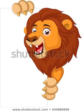 Rajz oroszlán medvebocs felirat illusztráció fehér Stock fotó © cthoman