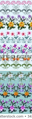 Fuchsia Carnation flower on white Stock photo © CatchyImages